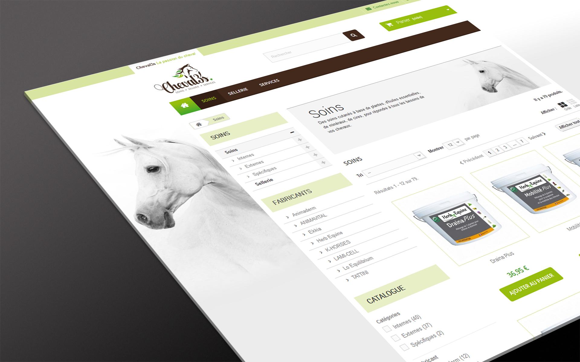 c3swebsite_2_details.jpg